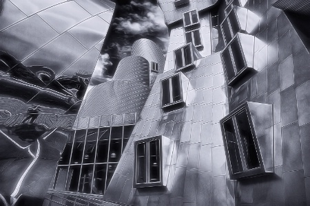 The B&W world of Frank Gehry