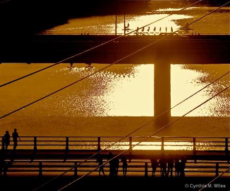 Urban Crossing