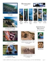 Big Sur photographs in Carr Classics catalog, p3