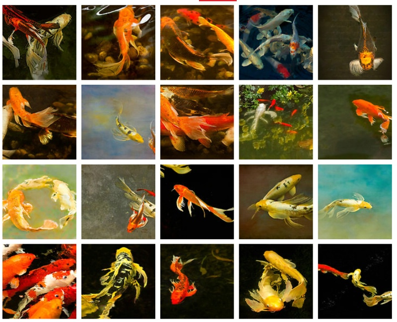 Koi, The Living Art - ID: 14971287 © Marilyn Cornwell