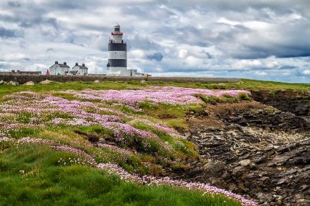 Hook Head Lighthouse  1525