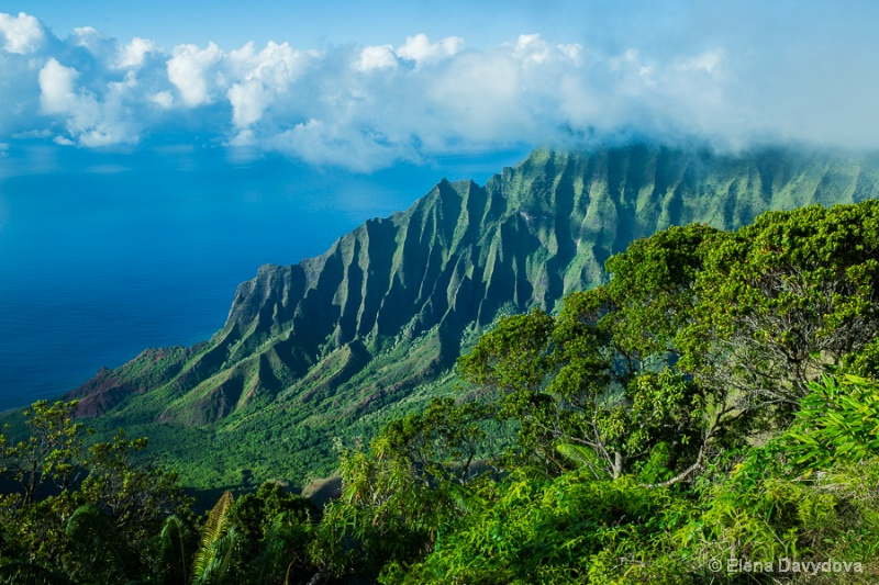 Kauai classics