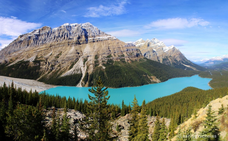 Peyto lake  - ID: 14999817 © ashley nicholas