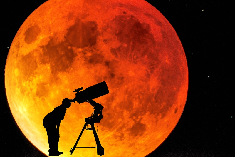 watching the blood moon - ID: 15003754 © Ronald Balthazor