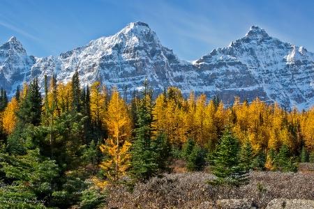 Autumn in Larch Valley