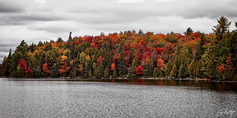 Autumn On Canoe Lake