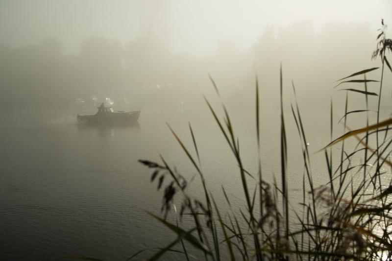 Morning Fog - ID: 15017884 © Ilir Dugolli