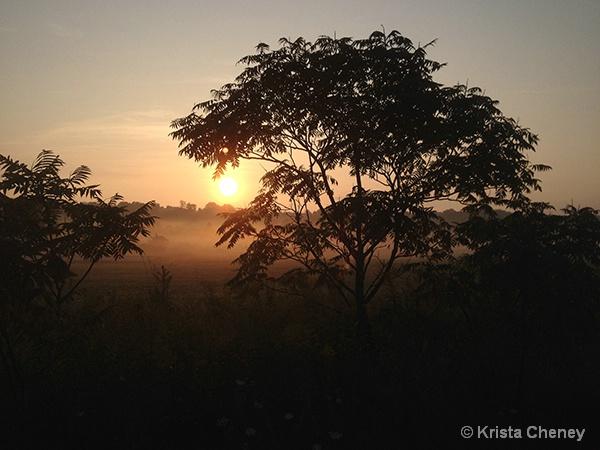 Sunrise—Charlotte, VT - ID: 15018249 © Krista Cheney