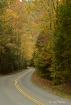 Tremont Road