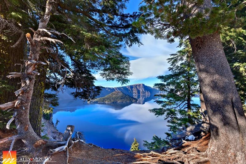 Blue Lake Viewed Through the Evergreen Rim