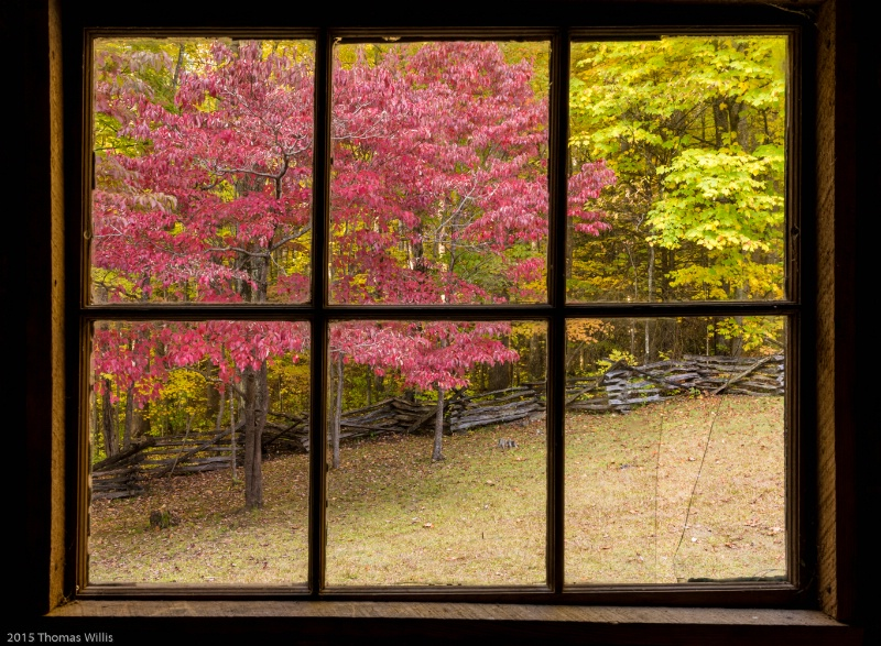 Window of Alex Cole cabin - ID: 15028842 © Thomas L  Willis