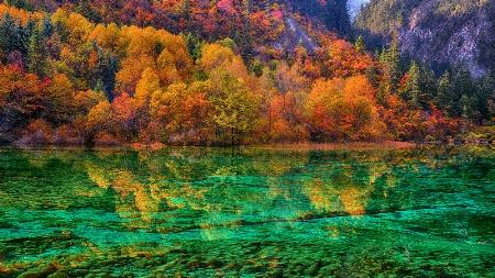 Autumn colors reflections