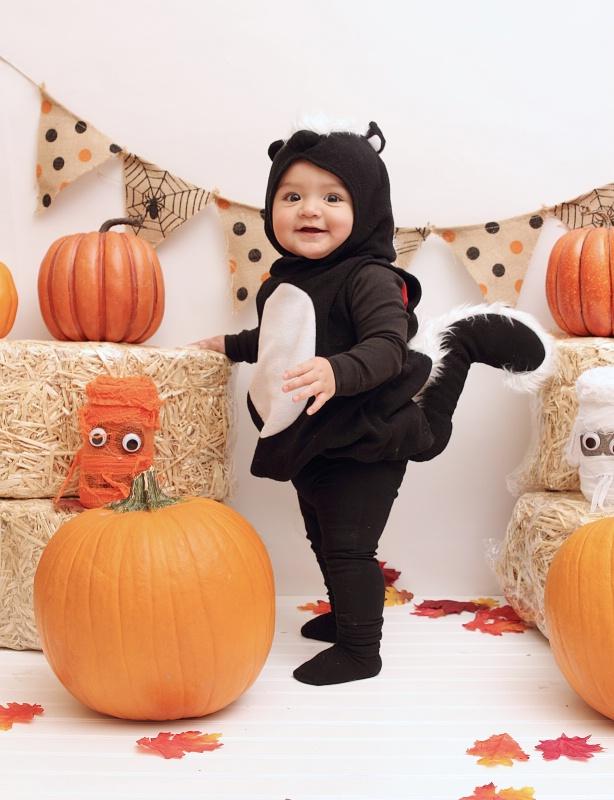 *Little Cute Skunk*