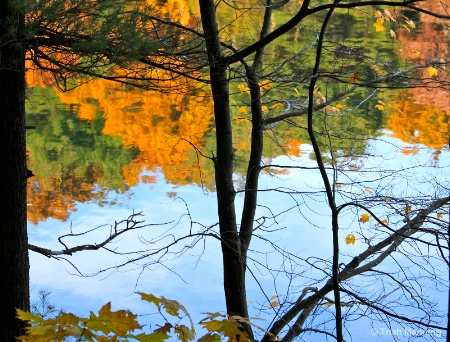 Fall colors reflected - through the trees...