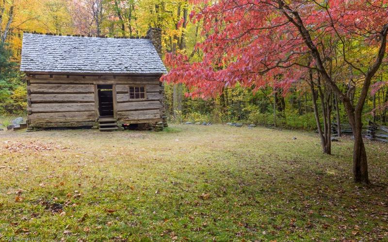 Alex Cole cabin - ID: 15033476 © Thomas L  Willis