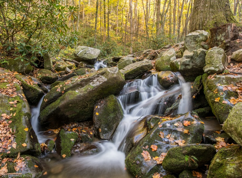 Double falls - ID: 15033478 © Thomas L  Willis