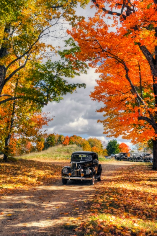 Antique Autumn