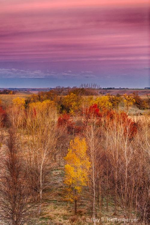 h0c7633 Fall 2015 - ID: 15043763 © Raymond E. Reiffenberger