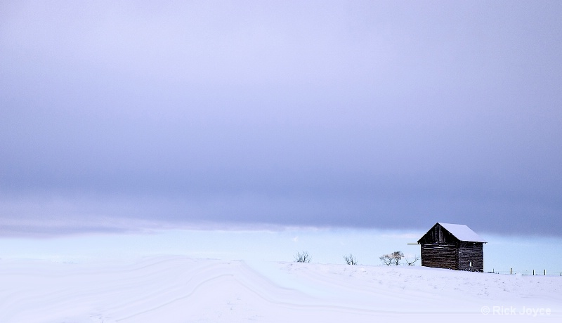 Shack in Snow