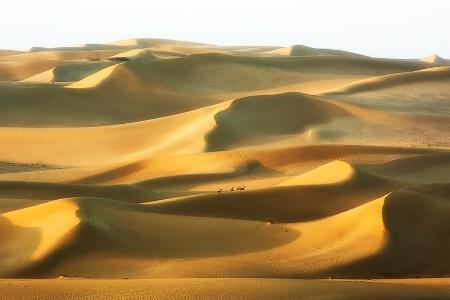 SandScape