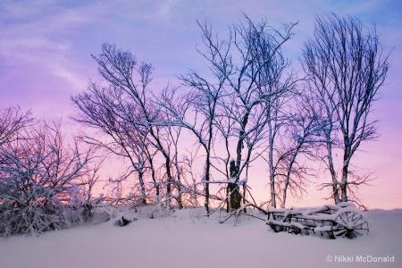 Hayrake in Winter