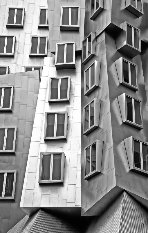 ~ windows ~