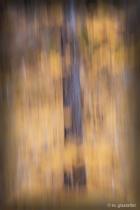 Abstract Aspen