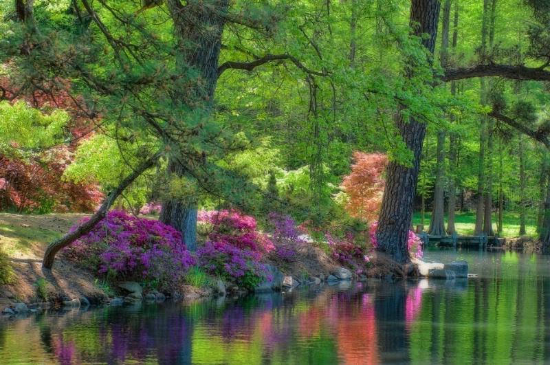 Maymont Spring ... 7 - ID: 15061466 © Wanda Judd