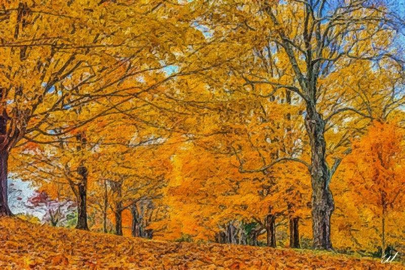 Maymont Fall ...  - ID: 15061470 © Wanda Judd