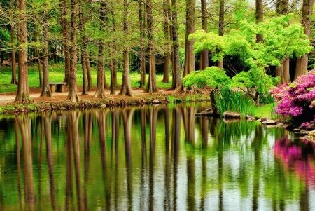 Maymont green Spring ... 12