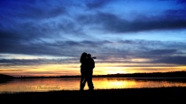 Silhouettes in the sunsets