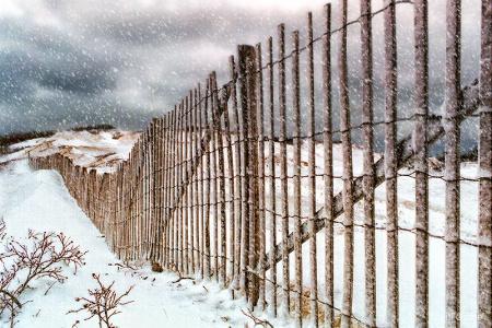 Grey Day Fence