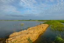 Lake Bueng Boraphet - Thailand