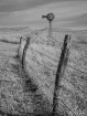 Prairiescape