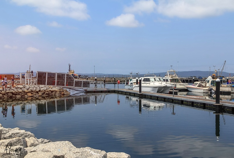 Boats in the little boat harbour  in Albany
