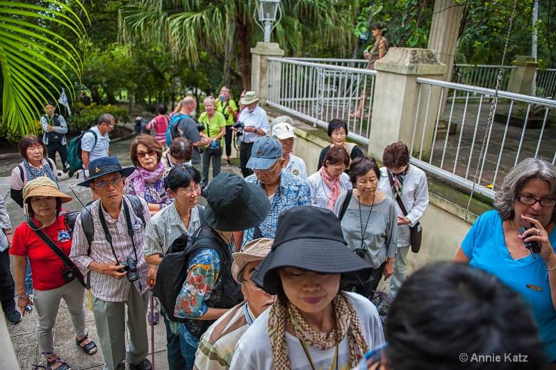 tourists at hemingway house - ID: 15076507 © Annie Katz