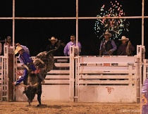 Bull Riding and Fireworks