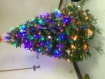Christmas tree @ ...