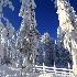 2Wintry Fence - ID: 15078636 © Ilir Dugolli