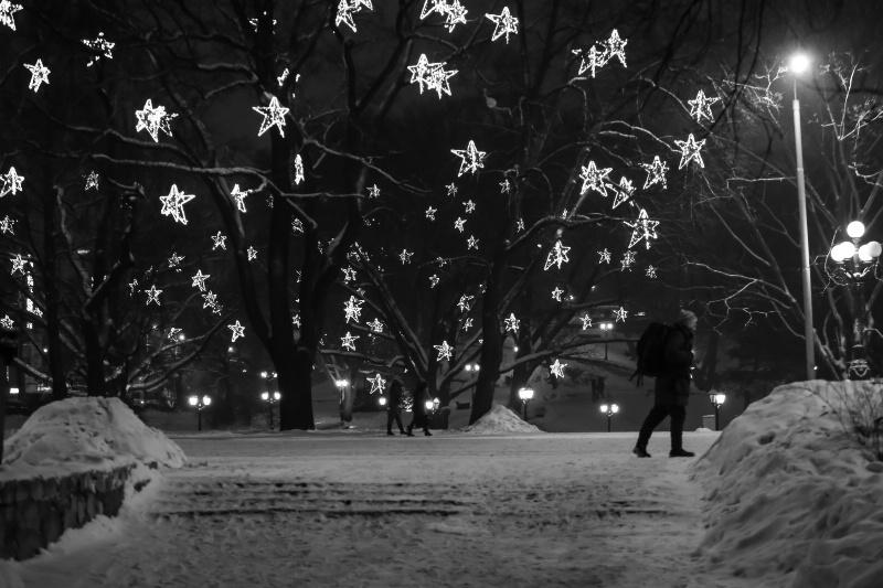 Winter Leaves - ID: 15081484 © Ilir Dugolli