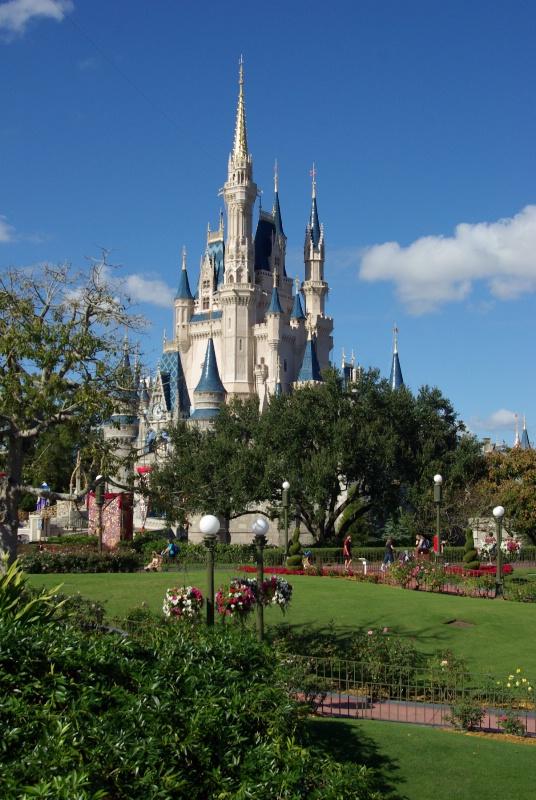 Disney - ID: 15083093 © Mark Andersen