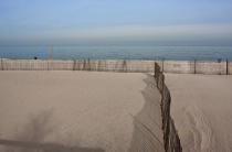 Stroll Along the Sand