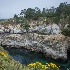 2point lobos-9653 - ID: 15083564 © John S. Brown