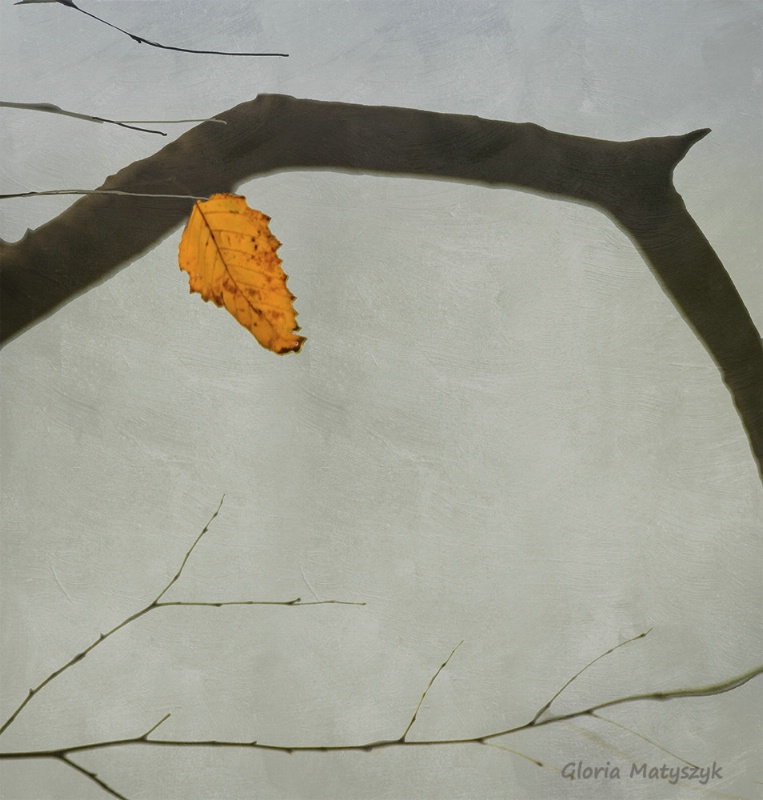 Simplicity: the last yellow leaf of fall.