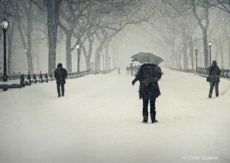 A Walk on a Winter's Day
