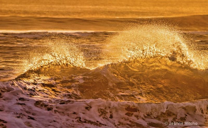 Surf's Up - ID: 15086186 © Jeanne C. Mitcho