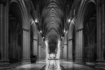 Night in the Nave