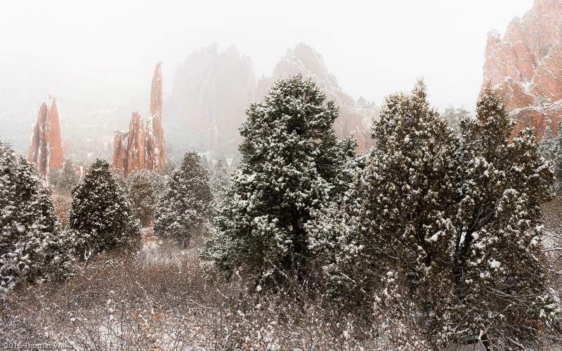 Red Rocks in the Snow - ID: 15087327 © Thomas L  Willis