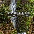2Multnomah Falls, Columbia River Gorge - ID: 15087375 © Fran  Bastress