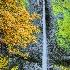 2Latourell Falls, Columbia River Gorge - ID: 15087376 © Fran  Bastress